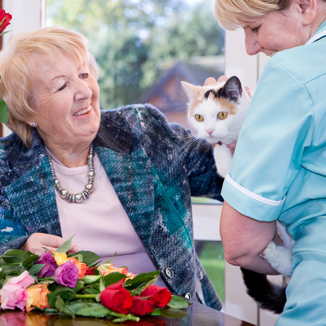 care homes for mild dementia